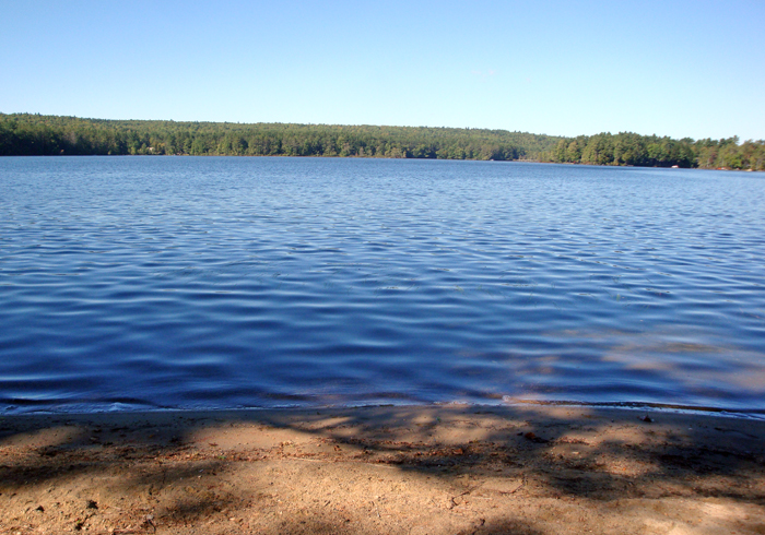 Maine Sebago Lake Region Vacation Rental tlcomp.3.JPG