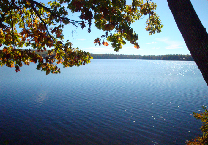 Maine Sebago Lake Region Vacation Rental tpvene.14.jpg